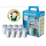 The KIT anti-scale and corrosion protection with 8 refills powder Gel